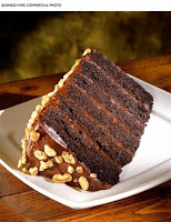 Motherlode chocolate cake