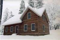 Modern pioneer house
