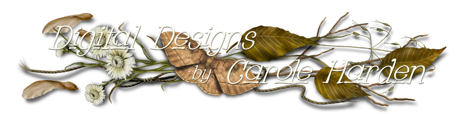 Digital Designs by Carole Harden