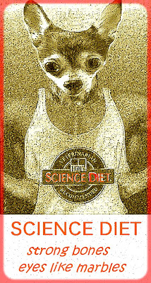 Science diet the BEST food for chihuahuas and cats dog food healthy