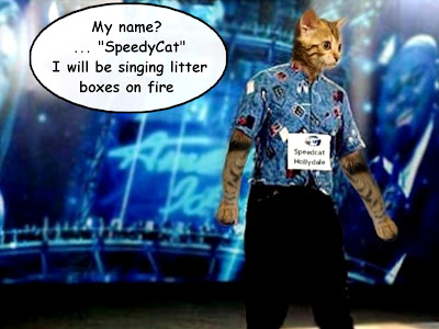 american idol 2011 singing cat