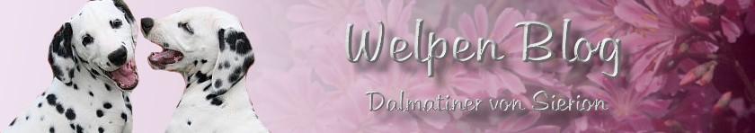 Welpen Blog