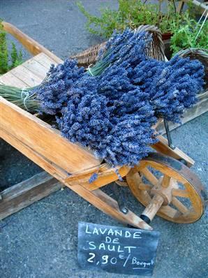Fotografije lavande i svega,što je vezano za nju. - Page 2 090512-provence-lavender-vmed-830a_widec