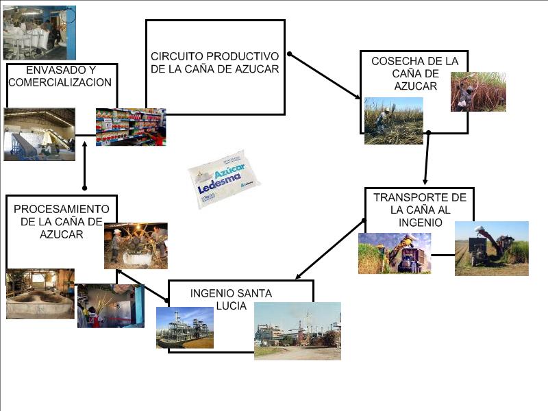 Circuito Productivo De La Caña De Azucar : Nuestro circuito productivo de la caña azucar por