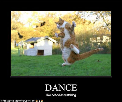 lol cat dance