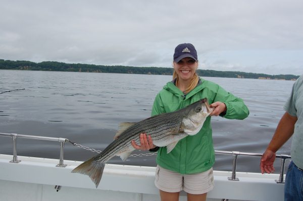 Justin and joy victor striper fishing in the chesapeake bay for Striper fishing chesapeake bay