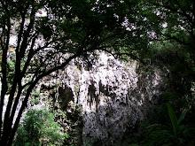 Cuevas de Camuy