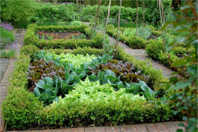 Pleasant living summer gardens winter dreams for Potager garden designs