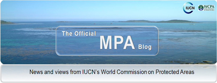 The Official MPA Blog