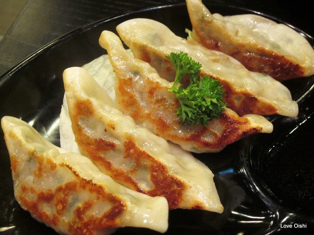 dumplings extra dumplings you filled 03 pan fried dumplings pan fried ...