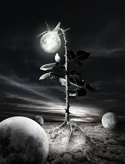 [dark+arte+fotos+9.jpg]