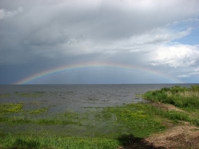 Rainbow over Peipsi lake