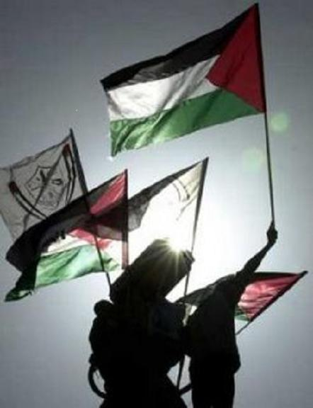 FLAGS OF FREE PALESTINE