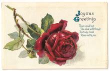 Ekte rose fryd  . . . . .