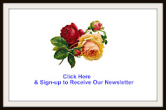 Sign-up for Email Newsletter