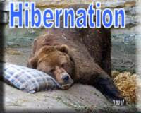 Hibernation Index link