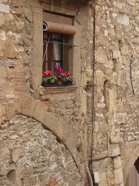 Las flores de tu ventana...