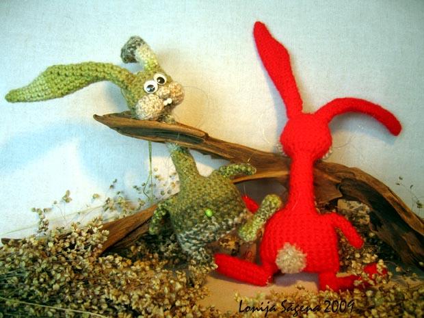 tamborēti zaķi, garkakla zaķi, Lofonsa