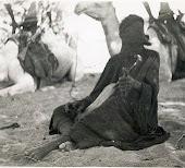 un Goumier de Kidal jouant d'un très ancien Luth .