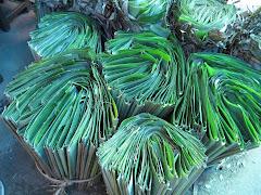 ernakulam market