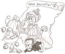 legge boccaFini