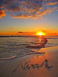 Noah's Sunset
