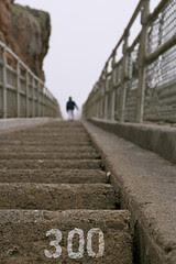 300+ Steps