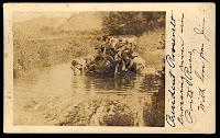 President Theodore Roosevelt crossing the Grande de Arecibo