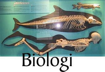 Biologi