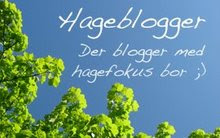 HAGEBLOGGAR