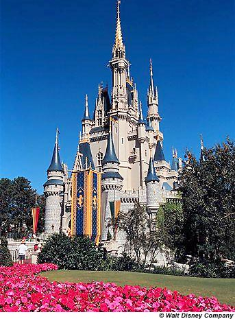 Walt Disney World Magic