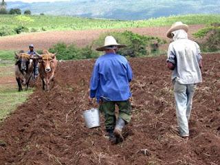 Cuba : développement humain élevé, empreinte écologique faible
