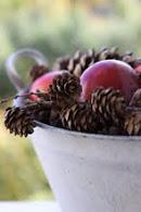 Kongler & epler i balje