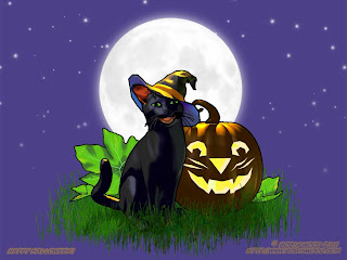 Halloween Cat And Pumpkin Wallpapers
