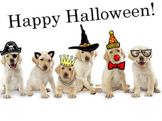 happy halloween by doggies