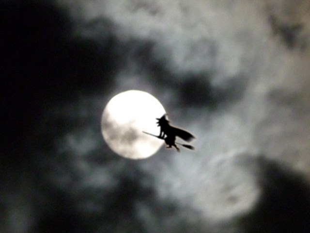 Witch and Moon - Halloween Wallpaper | Top Quality Wallpapers