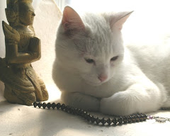 Goddess Kitty Ponders Bead Strand