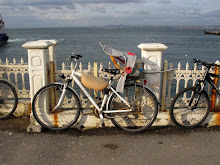 Bikes in Prince island