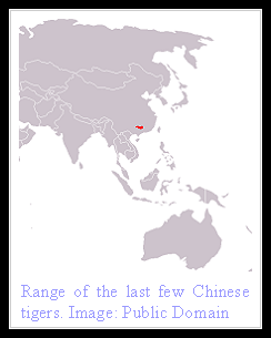South China Tiger distribution