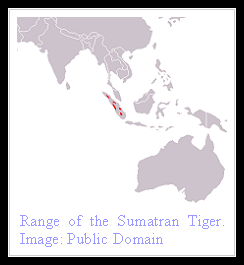 Sumatran Tiger distribution