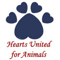 Adopt or help a pet. Visit this award winning very special animal shelter.