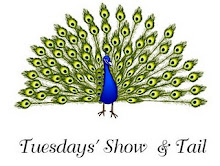 Tuesday Show and Tail
