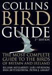 Collins Bird Guide 2nd Edition