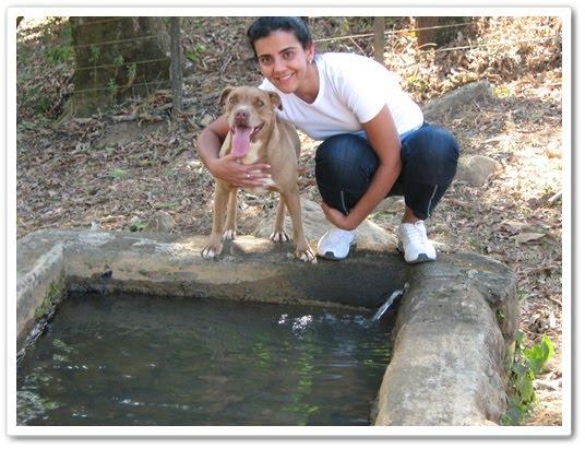 Entrevista com médica veterinária: Alexandra Castro