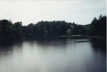 Lake Linnea