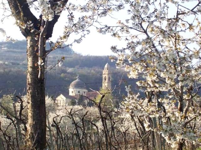 Marano, Valpolicella