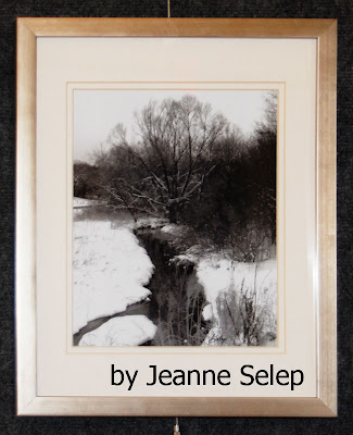 jeanne-selep-mequon-wisconsin-winter-snow