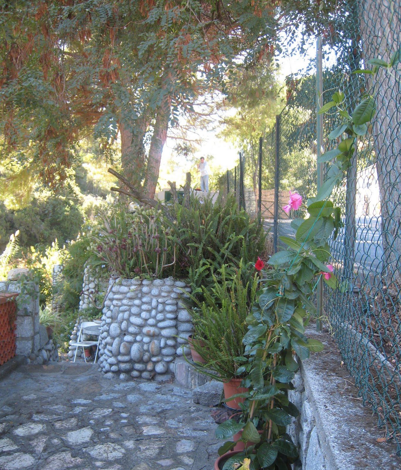 Fiori del mio giardino tempo di cotogne e melagrane - Sacchi di terra per giardino ...