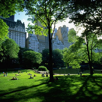 Central Park, New York, United States download free wallpapers iPad