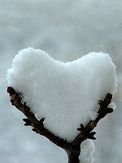 Srce od snijega, slika za zaljubljene download besplatne pozadine slike za mobitele